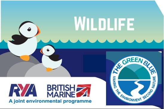 Wildlife Awareness Week 7-13th June